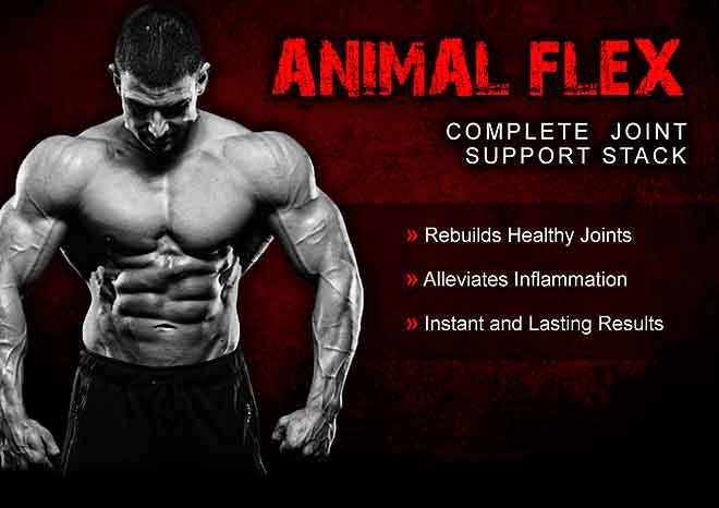 Universal animal flex papildas sąnariams