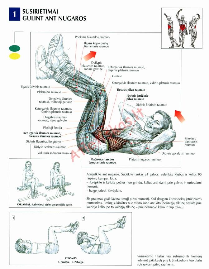 Susirietimų pilvo presui atlikimas