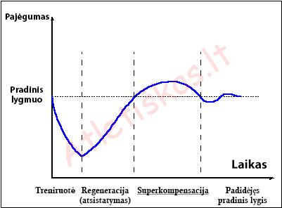 Superkompensacija, atsistatymasa po treniruotės