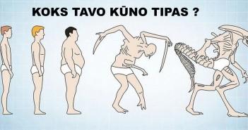 Kūnų tipai